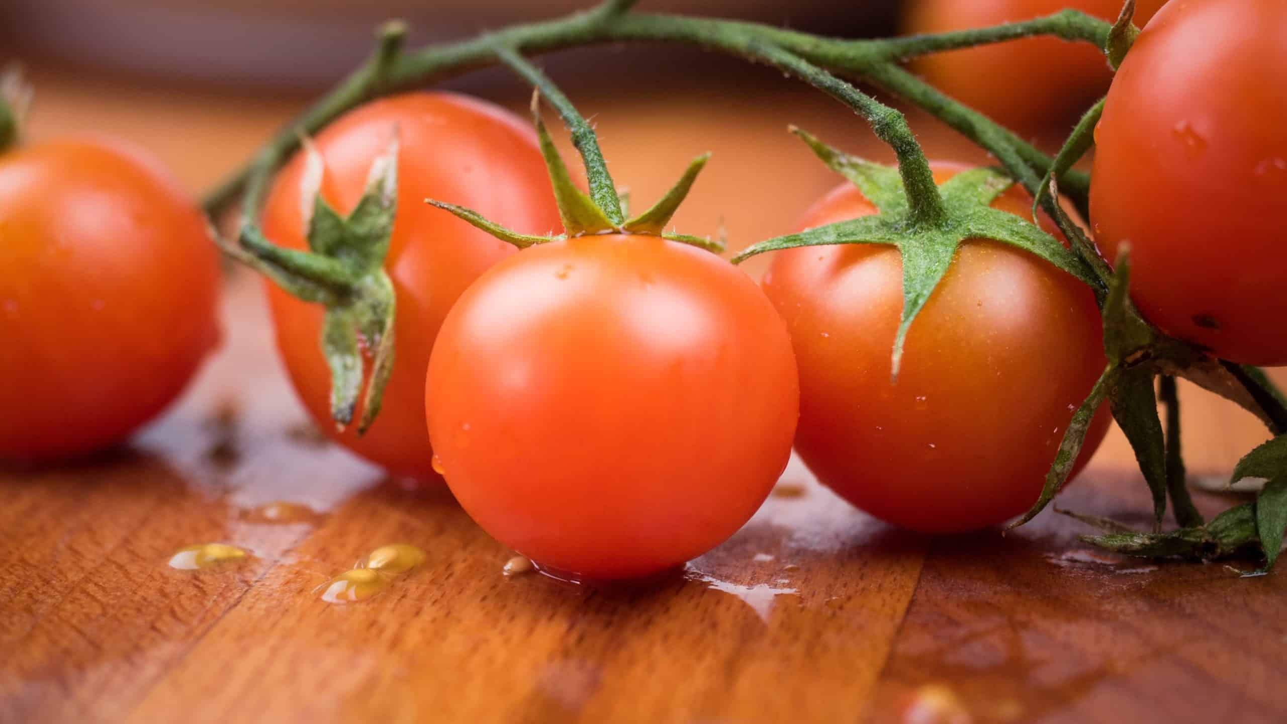 Mediterranean Cuisine: Some Of The Popular Dishes Of This Cuisine